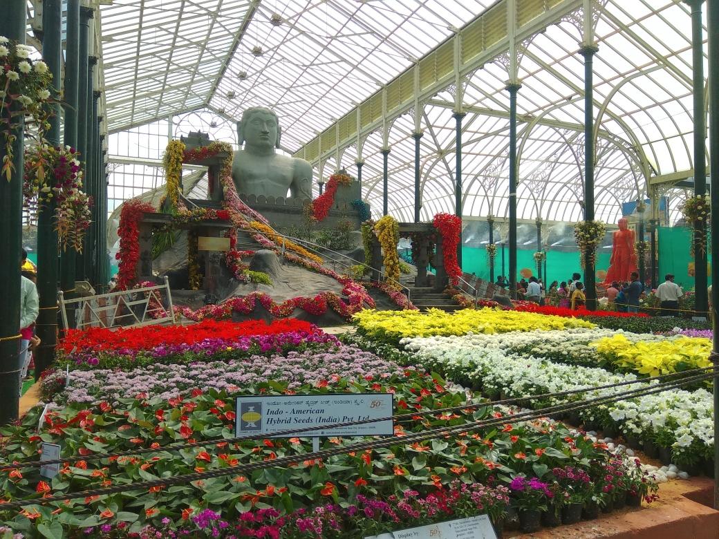 Fleurs Lalbagh Botanic Garden (9)