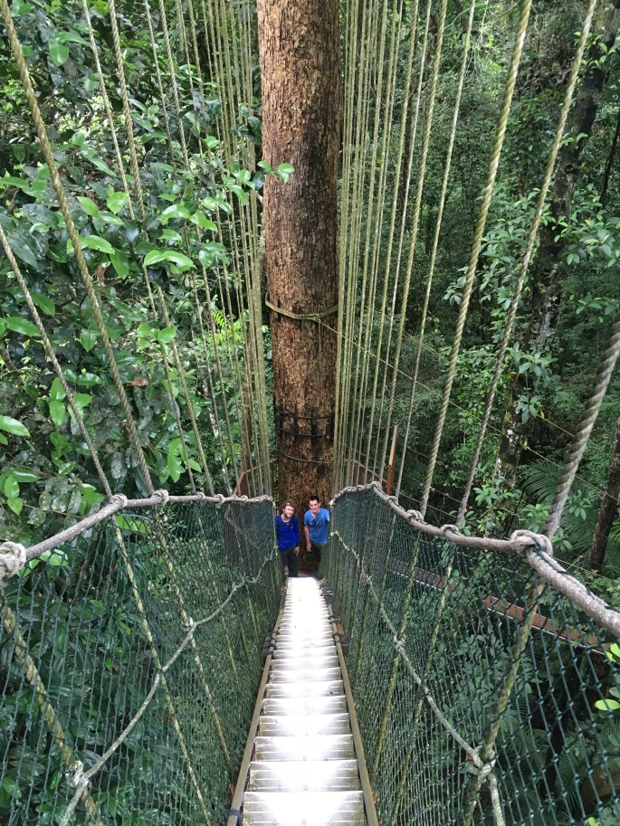 Canopy walk Teman Negara (4)