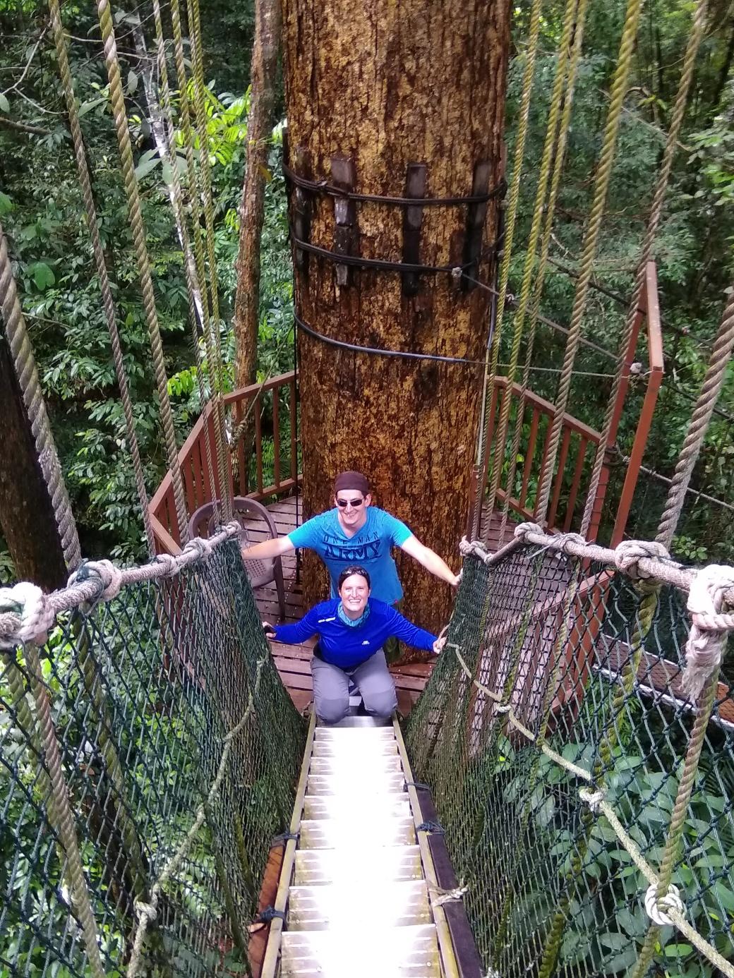 Canopy walk Teman Negara (8)