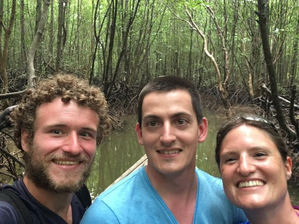 Mangroves (3).jpg
