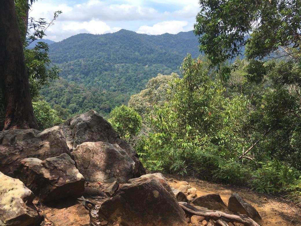 Viewpoint Terisek (2)