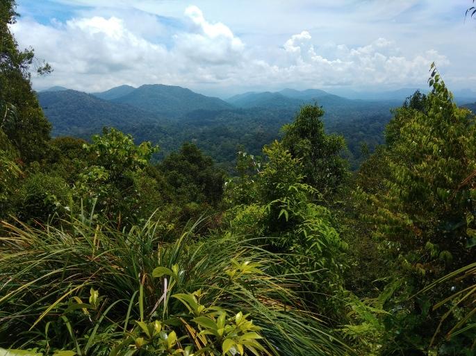 Viewpoint Terisek (3)