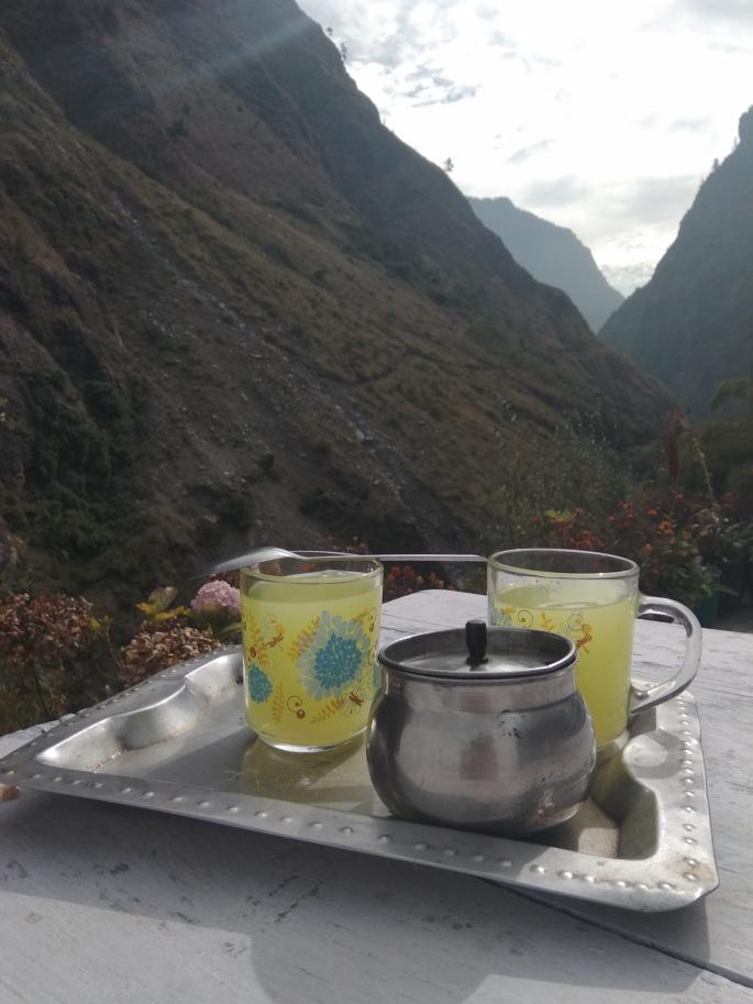 Annapurna Circuit Trek (65)