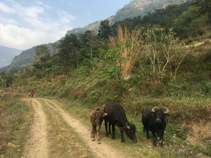 Annapurna Circuit Trek en Solo (3)