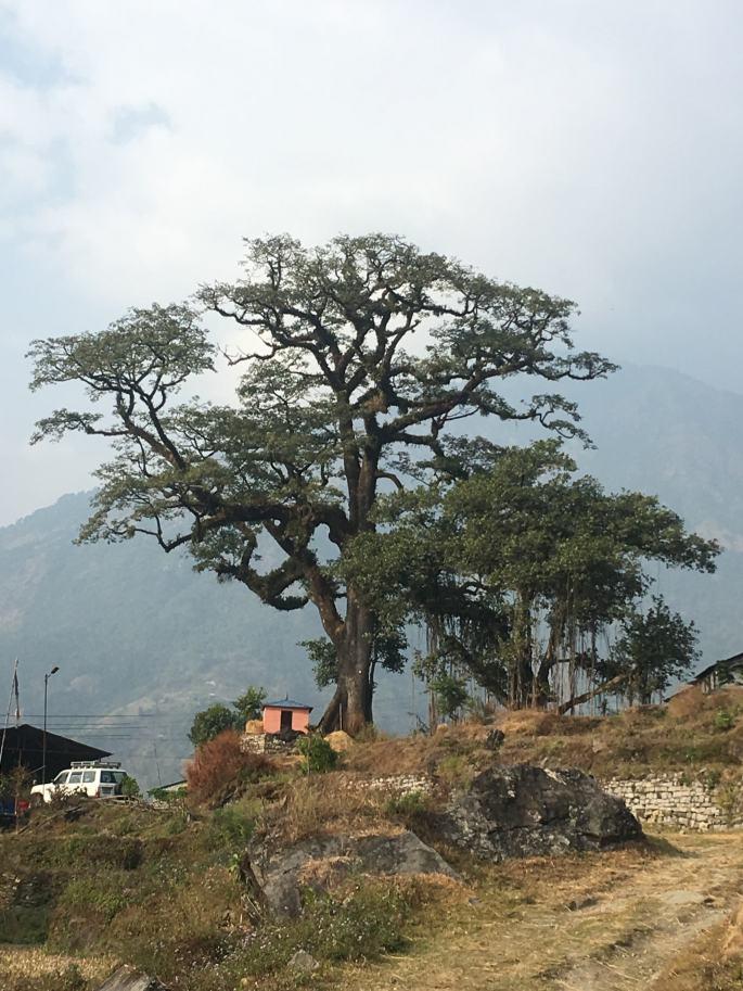Annapurna Circuit Trek en Solo (4)
