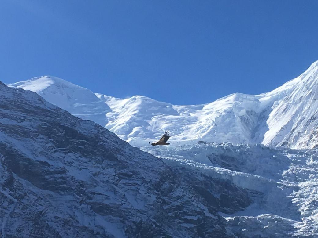 Annapurna Circuit Trek en solo D9 (5)