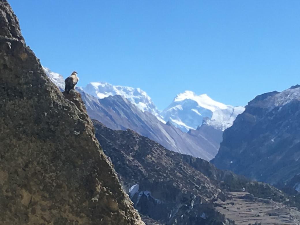 Annapurna Circuit Trek en solo D9 (6)