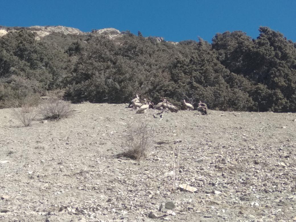 Annapurna Circuit Trek en solo D9 (8)