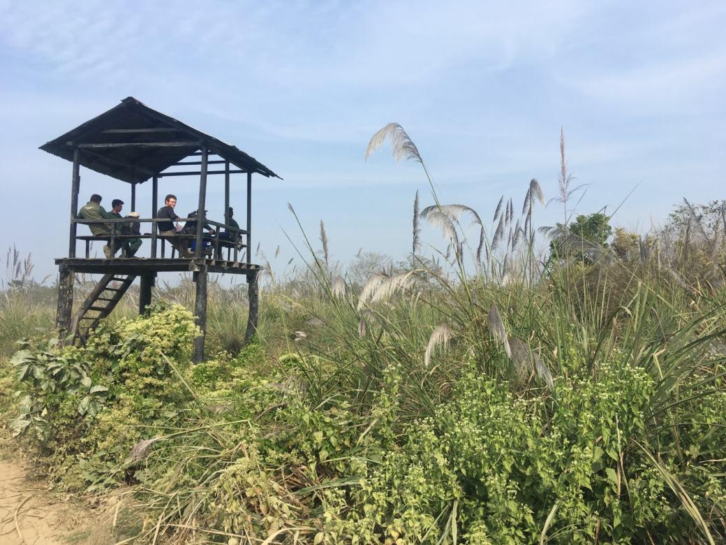 Chitwan Safari Walk (16)