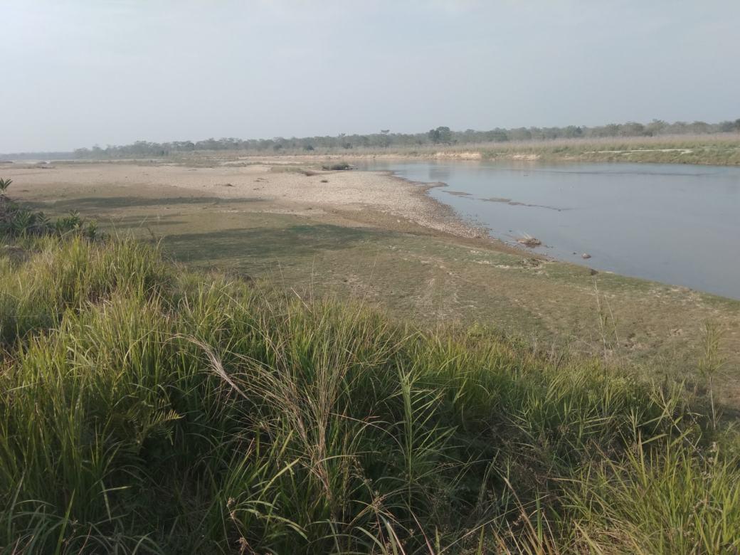 Chitwan Safari Walk (19)