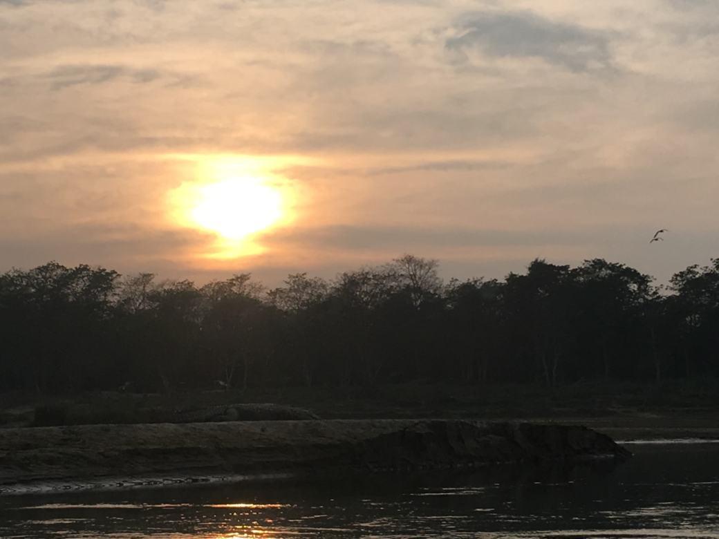 Chitwan Safari Walk (22)