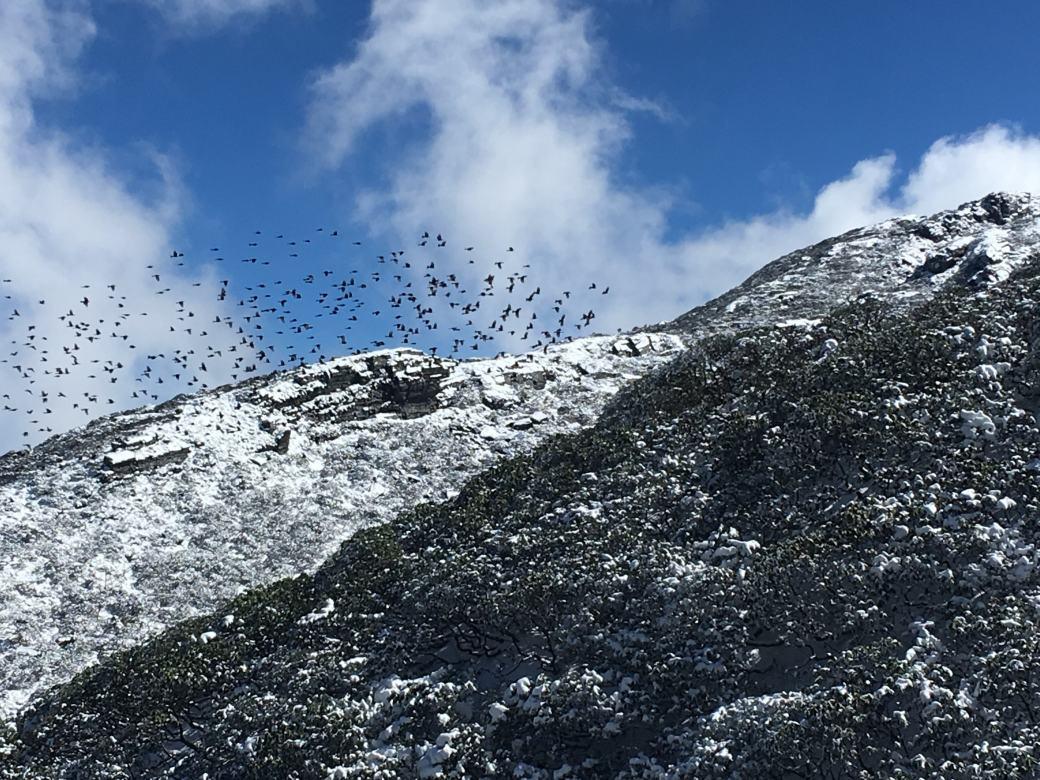 Dali Cangshan Mountain (5)