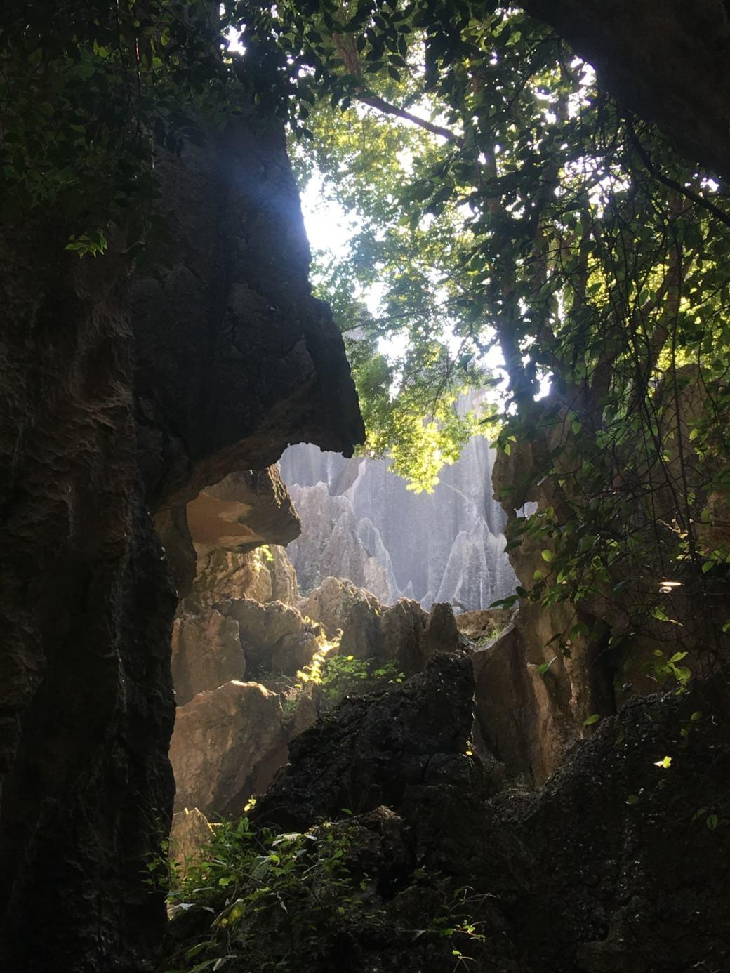 Foret de pierres Shilin (10)