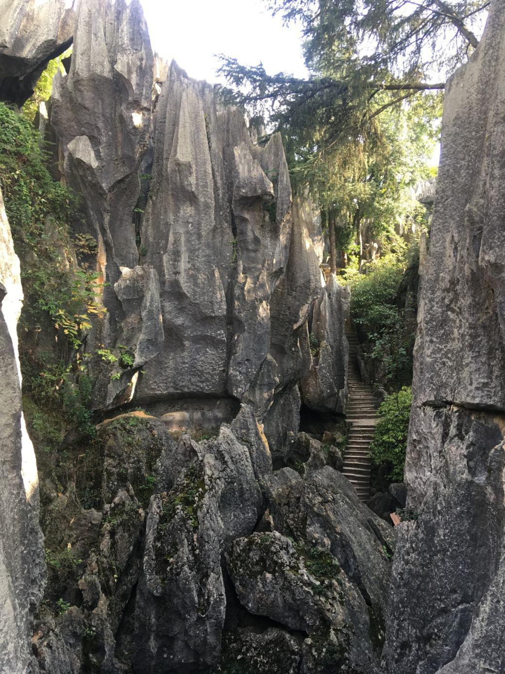 Foret de pierres Shilin (11)