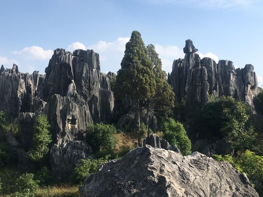 Foret de pierres Shilin (16)