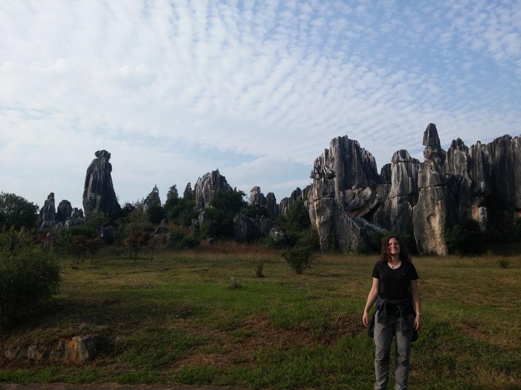 Foret de pierres Shilin (19)