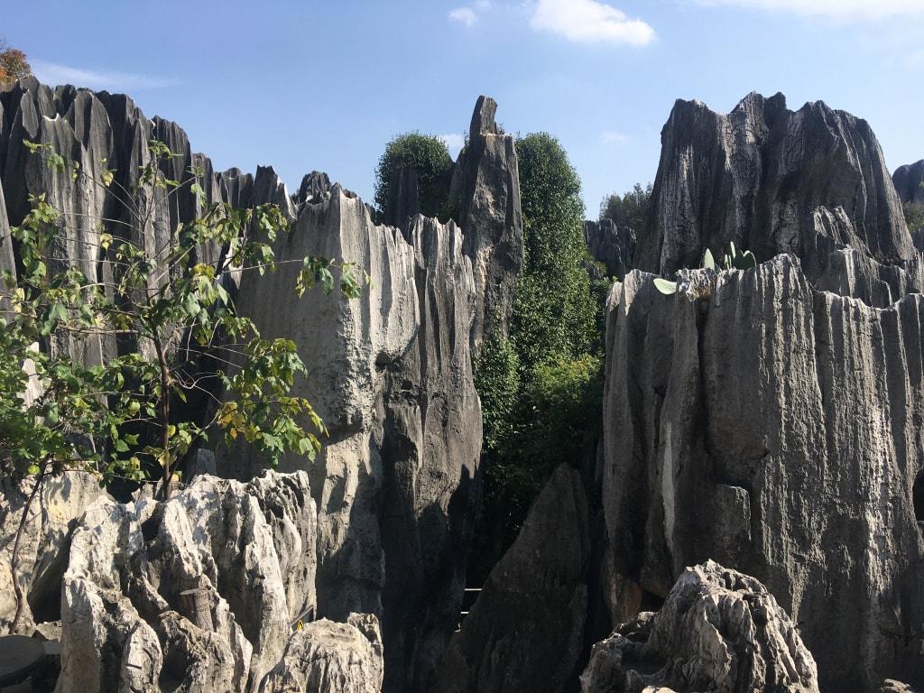 Foret de pierres Shilin (7)