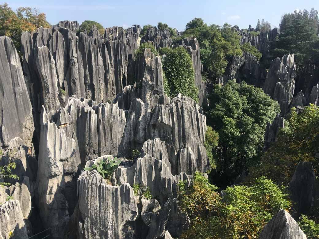 Foret de pierres Shilin (9)