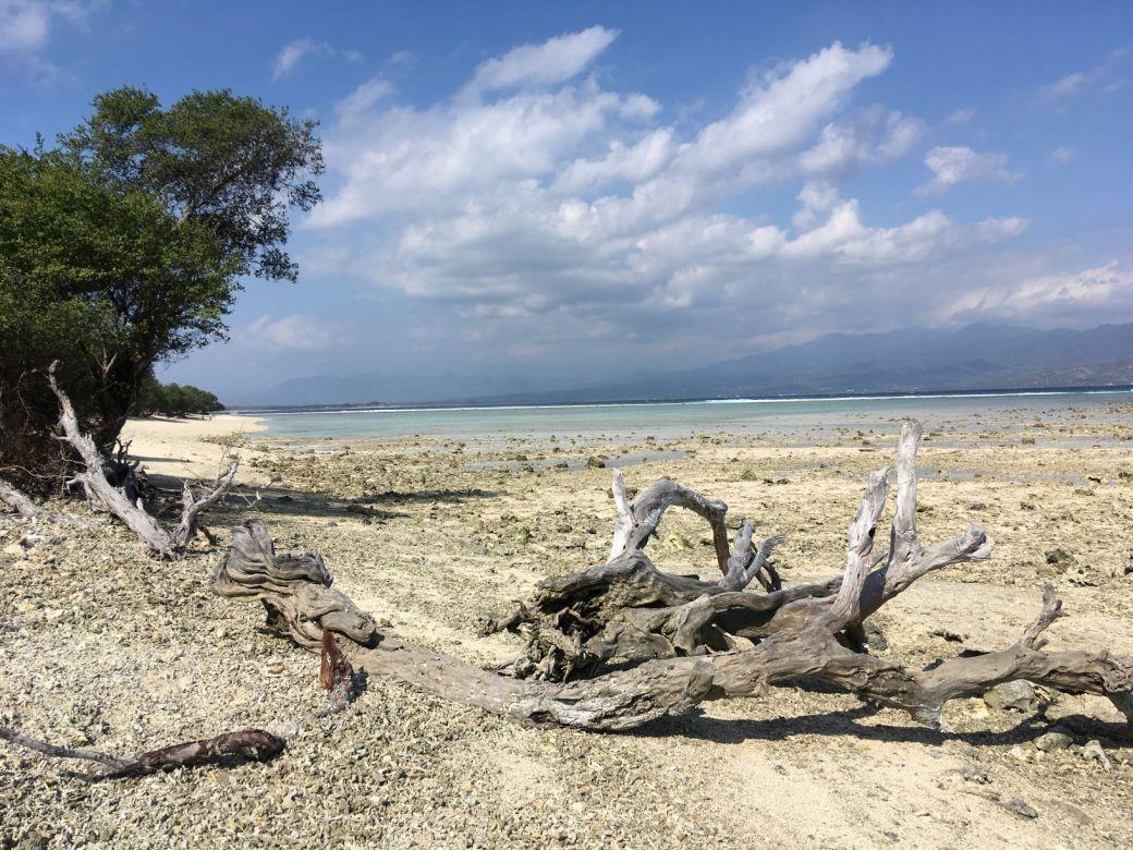 Gili Trawangan Beach Plage (7)