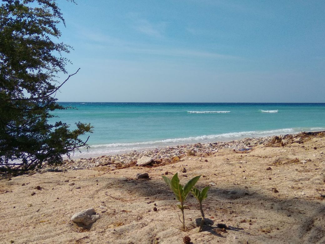 Gili Trawangan Beach Plage (9)