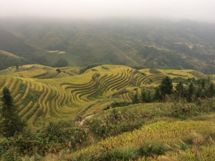 Guilin - Rizières de Longsheng (4)-min