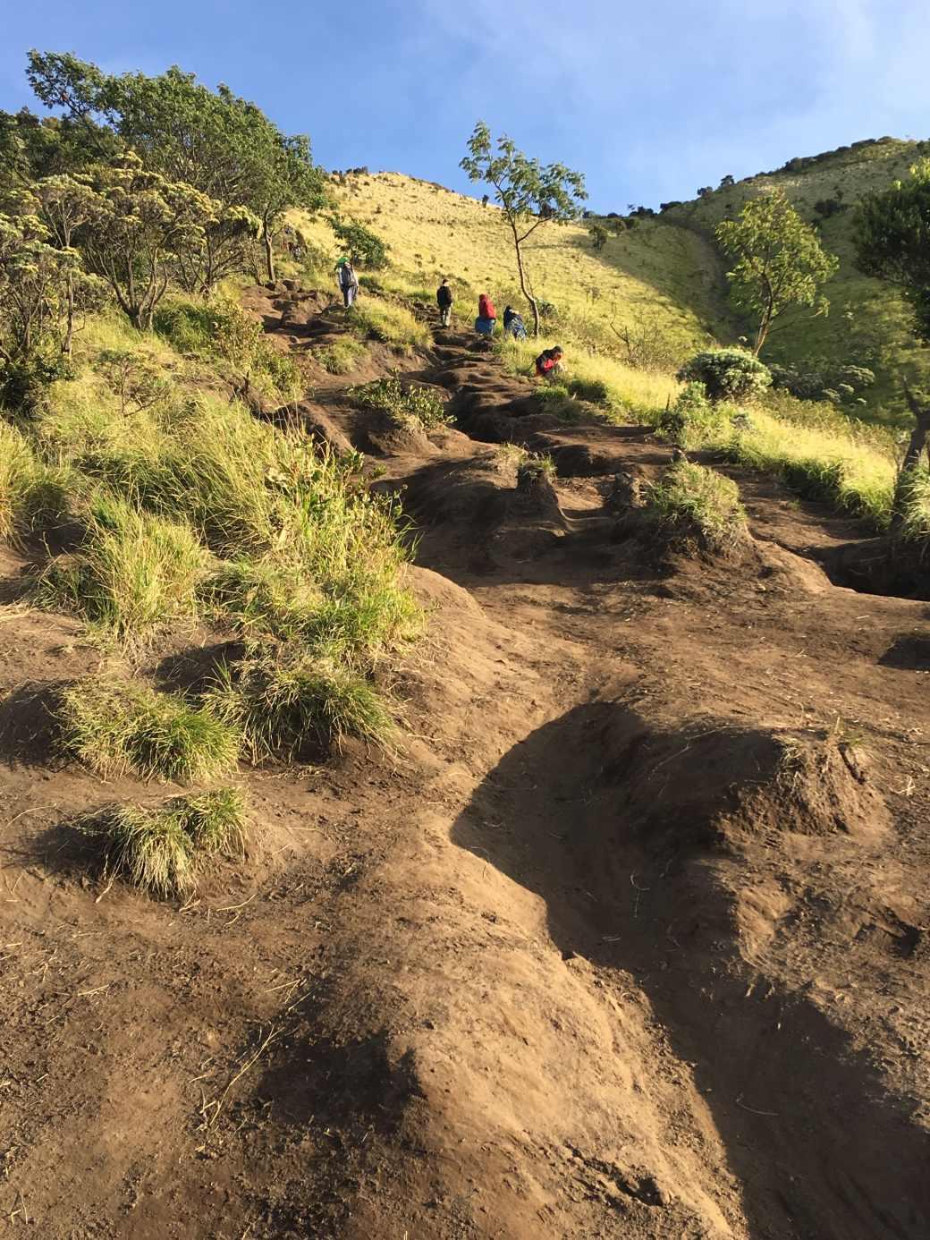 Gunung Merbabu Trek (5)-min