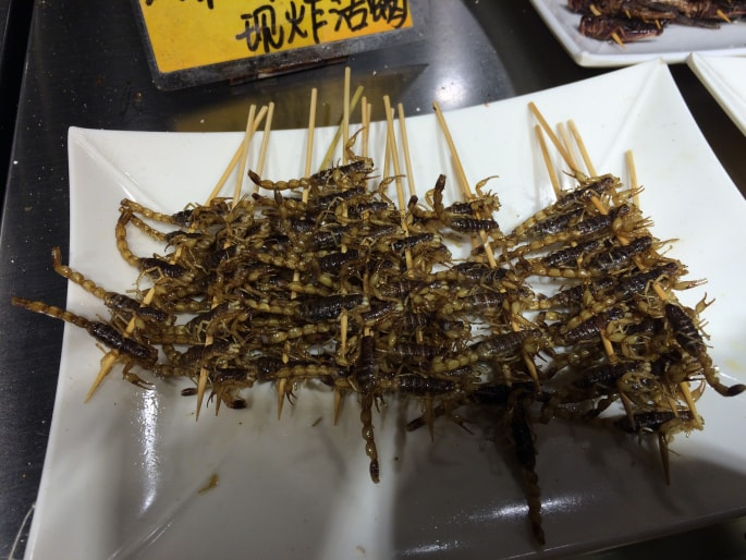 Insects Food Guilin (1)-min