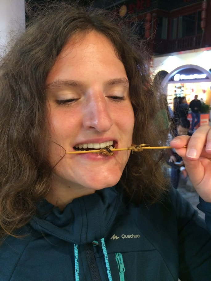 Insects Food Guilin (6)-min