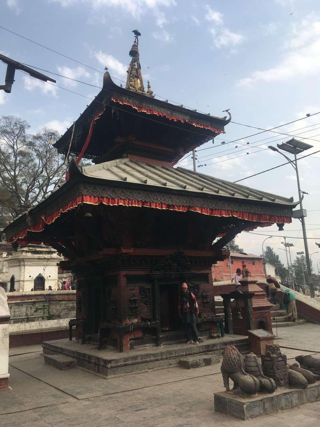 Pushpatinath Temple (10)
