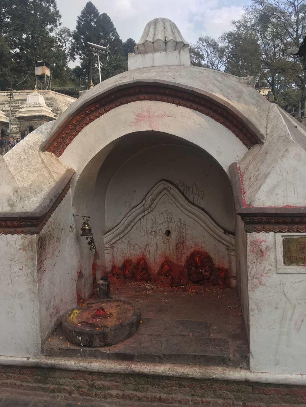 Pushpatinath Temple (12)