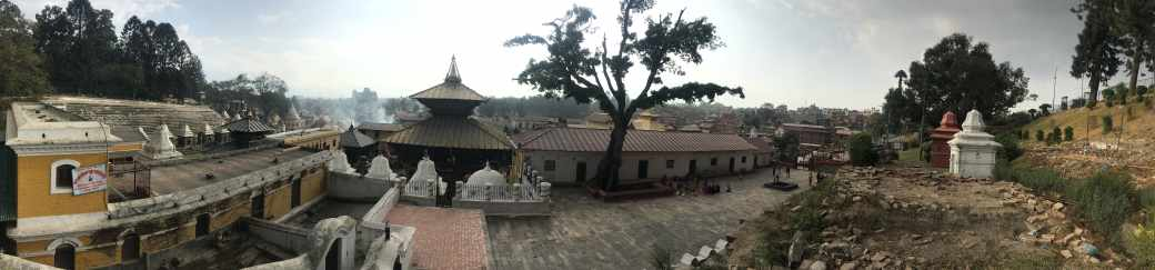 Pushpatinath Temple (7)