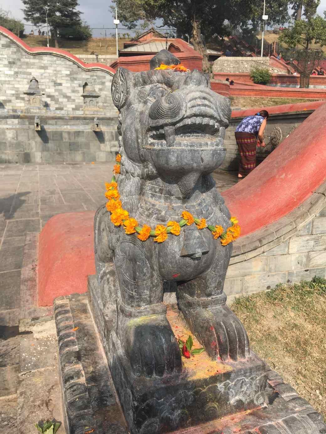 Pushpatinath Temple (9)