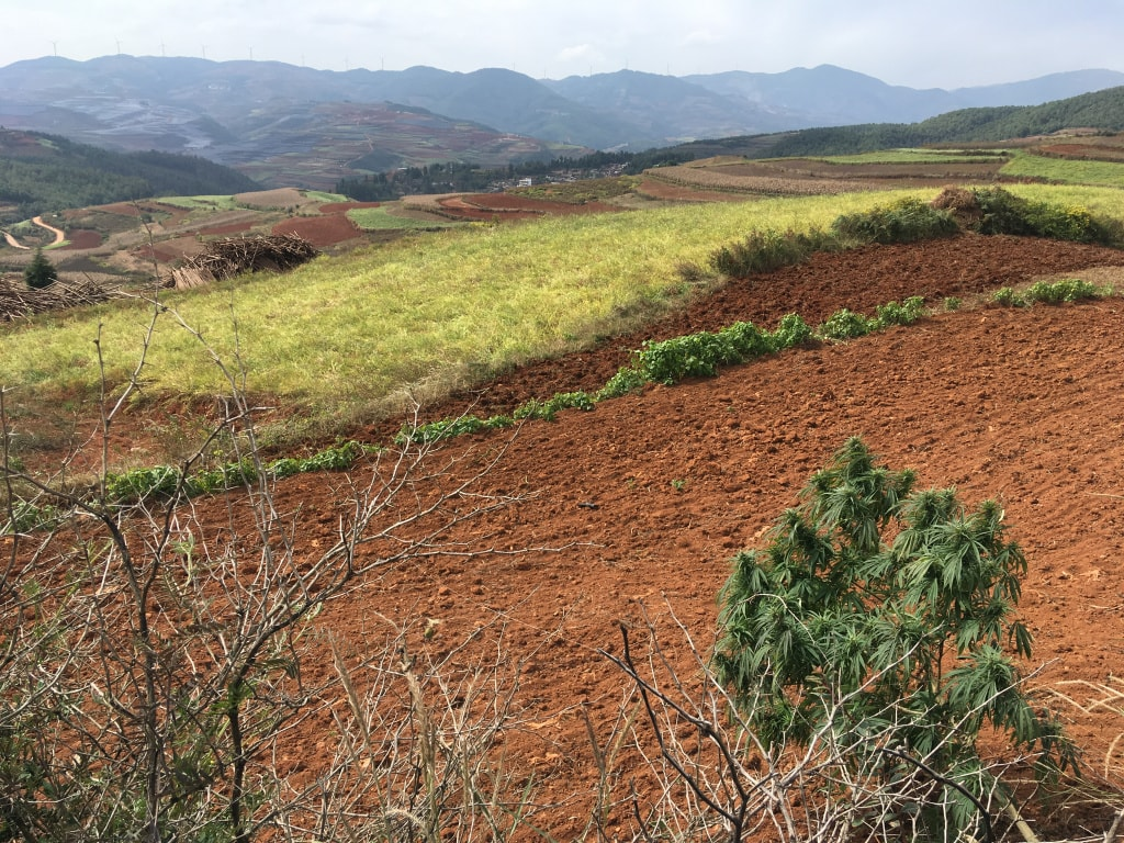 Red lands Dongchuan (14)