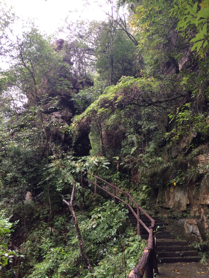 Zhangjiajie national Park (17)