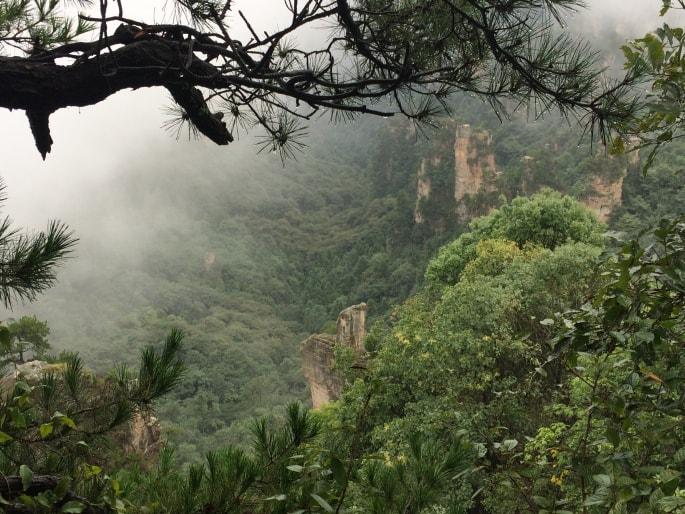 Zhangjiajie national Park (6)